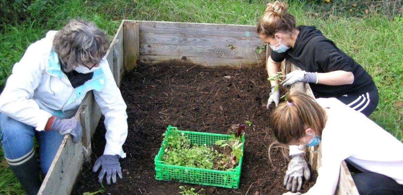 Le jardin potager bientôt prêt pour l'hiver !